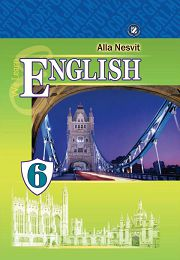 Англійська мова 6 клас Несвіт А.